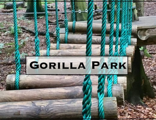 Gorilla Park Vejle