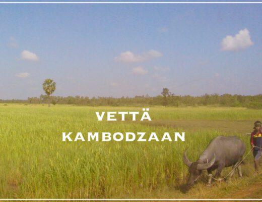 Vettä Kambodzaan